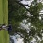 golf_nay_2013_3_Velka_lomnica_270